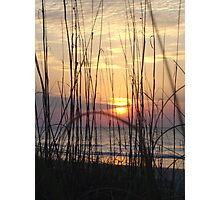 Beach Sunrise Through the Dune Grass  Photographic Print