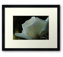 Artistry in Bloom Framed Print