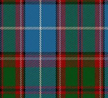 02650 Dunedin (USA) District Tartan Fabric Print Iphone Case by Detnecs2013