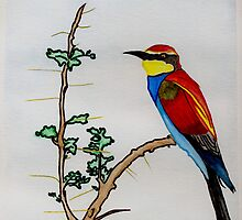 The European Bee-eater by Anne Gitto
