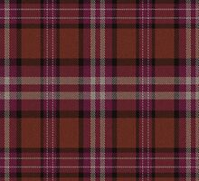 02653 Manatee County, Florida E-fficial Fashion Tartan Fabric Print Iphone Case by Detnecs2013
