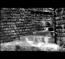 Planting Fields Arboretum State Historic Park Brick Stairs Detail - Upper Brookville, New York by © Sophie W. Smith