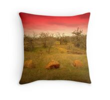 Three Rocks to a Pass Throw Pillow