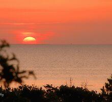 Perfect Evening! by Sandy Woolard