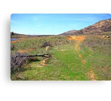 Trail to the Mount Canvas Print