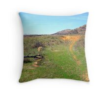 Trail to the Mount Throw Pillow