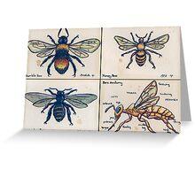 Bees Greeting Card