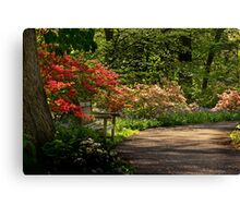 Azalea Heaven Canvas Print