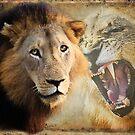LION PORTFOLIO by RonelBroderick