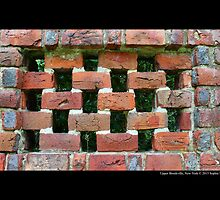 Red Brick Wall Detail - Planting Fields Arboretum State Historic Park - Upper Brookville, New York by © Sophie W. Smith