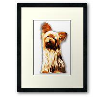 Yorkshire Puppy Tiny Dog Framed Print