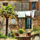 Hodgepodge-Corchiano, Italy by Deborah Downes