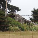 Old Barn at Moss Landing by Sandra Gray