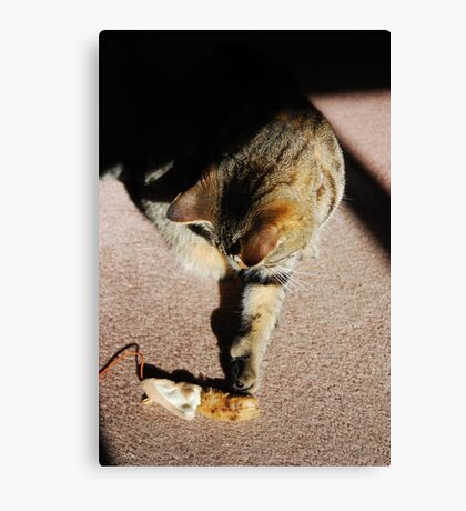 Touch Canvas Print