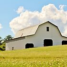 Large White Barn by Cynthia48