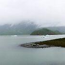 Alaskan Glacier by bungeecow