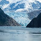 Alaskan Glacier from Sea by bungeecow