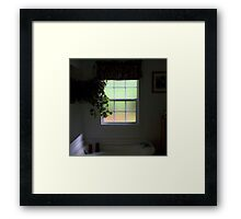 Soft Southern View Framed Print