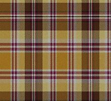 02667 Luzerne County, Pennsylvania E-fficial Fashion Tartan Fabric Print Iphone Case by Detnecs2013