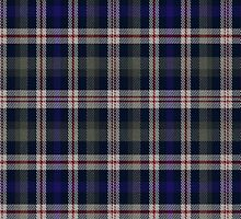 02671 City and County of St. Louis E-fficial Fashion Tartan Fabric Print Iphone Case by Detnecs2013