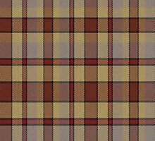 02675 Davis County, Utah E-fficial Fashion Tartan Fabric Print Iphone Case by Detnecs2013