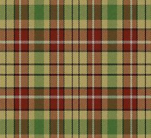 02677 Henrico County, Virginia E-fficial Fashion Tartan Fabric Print Iphone Case by Detnecs2013