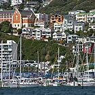 Wellington Harbor by phil decocco