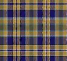 02679 Larimer County, Colorado E-fficial Fashion Tartan Fabric Print Iphone Case by Detnecs2013