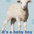 It's a baby boy by Deborah McGrath
