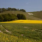 Calne White Horse by Karl Thompson