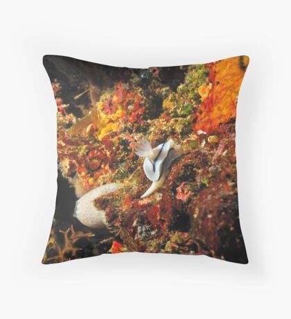 Nudibranch - Bunaken Island, Sulawesi Indonesia Throw Pillow