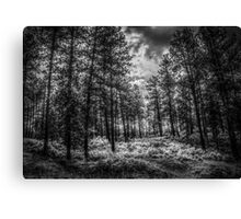 Mountains Majesty-Black and White Canvas Print