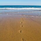 Footprints by Paudie Scanlon