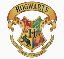 Hogwarts Harry potter by VirtualMan