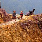 Children of Vietnam by Charlie-R