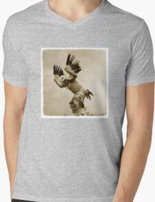 Eagle  Mens V-Neck T-Shirt