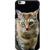 Cat with Turquoise Eyes iPhone Case/Skin