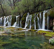 Arrow Bamboo Waterfall by Sid Paleri