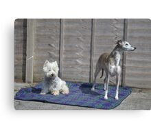 Meme and Me(Gracie Whippet) Canvas Print