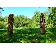 CARVINGS IN THE FOREST..#2 Photographic Print