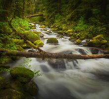 The Waters of Larch Mountain by Bendinglife