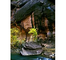 Autumn In The Narrows, Zion NP Photographic Print