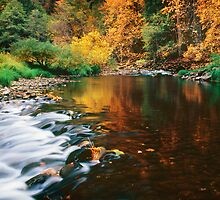 Autumn on the Merced River by Edward Mendes