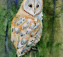 Barn owl by Redilion