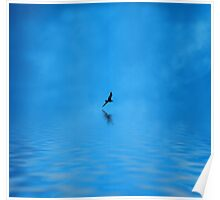 Blue Water Flying Poster