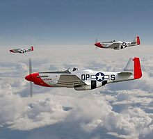 P51 Mustang - 334th Fighting Eagles by Pat Speirs