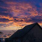 Purple Sky by schnappischnap