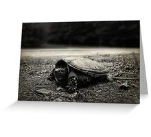Baby Snapping Turtle Greeting Card