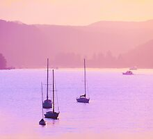 Mauve Days And Warm Summer Nights by ShotsOfLove