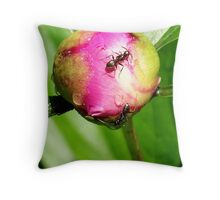 Looking For A Way Inside Your Heart Throw Pillow